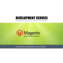 Magento Development Service (hours)
