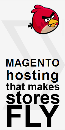 Magento Hosting that makes stores fly