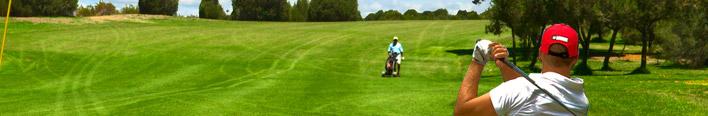 Golf Magento Template